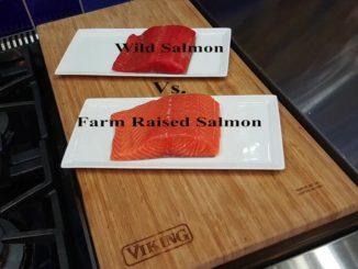 wild alaskan salmon vs farm raised salmon