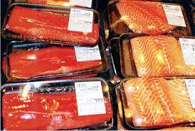 wild vs farm salmon