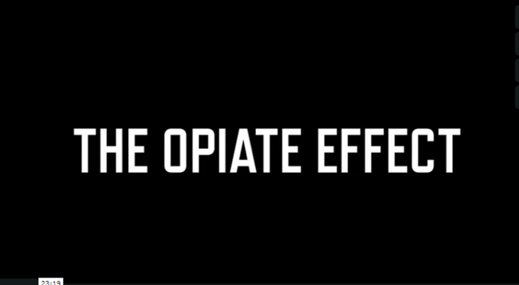 how opiates effects the body