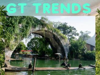 gt trends