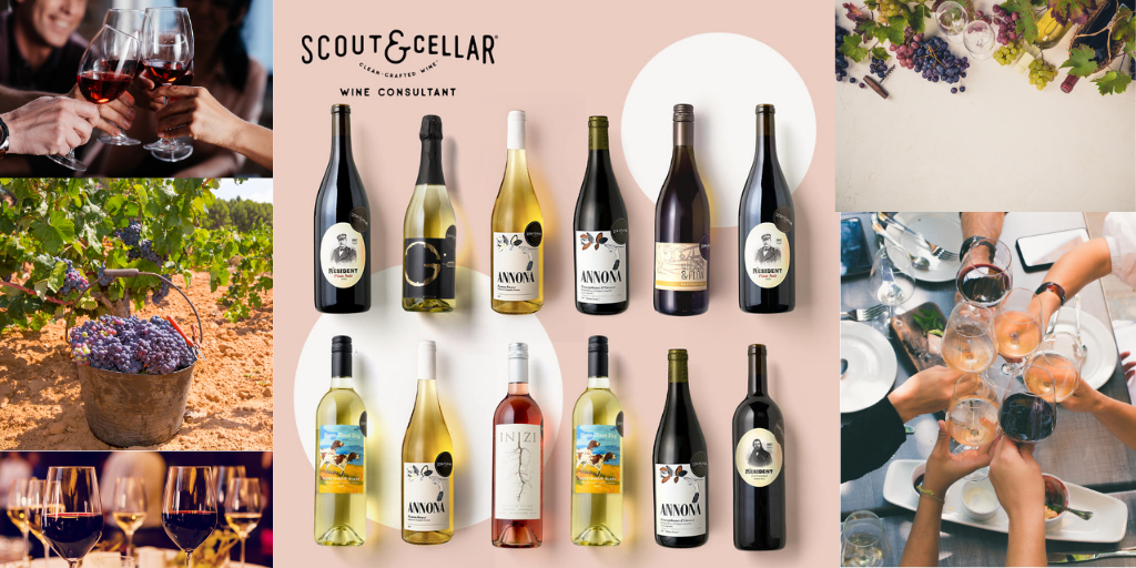 what is scout and cellar about