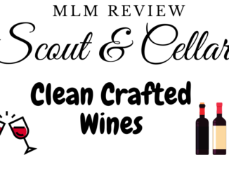 what is scout and cellar mlm about
