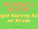 what is MyPoints about